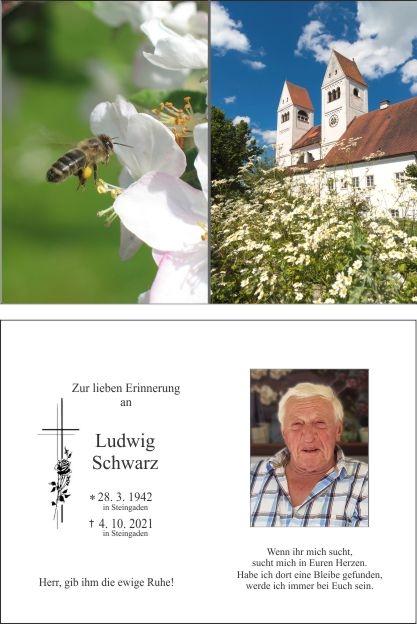 Ludwig Schwarz